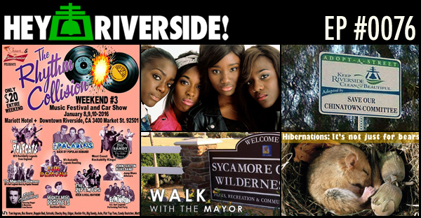 RIVERSIDE WEEKEND: FRIDAY JANUARY 08 2016