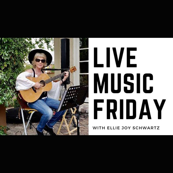 Ellie Joy Schwartz (Riverside, folk pop blues)